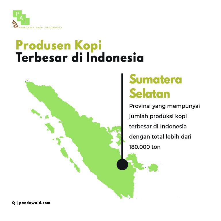 Produsen Kopi Terbesar di Indonesia